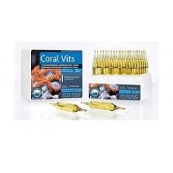 Prodibio Coral Vits 1 unidad