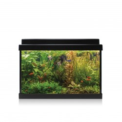 Kit AQUA-LED 20 con filtro...