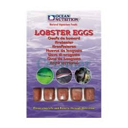 Ocean Nutrition Huevos de...